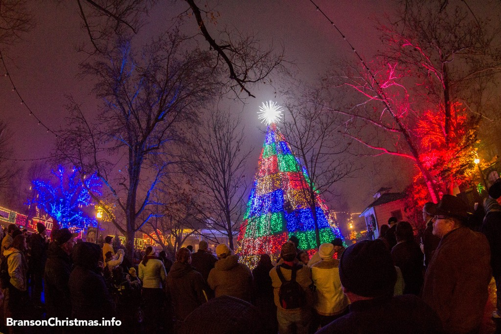 sdc-tree-main-street-fisheye