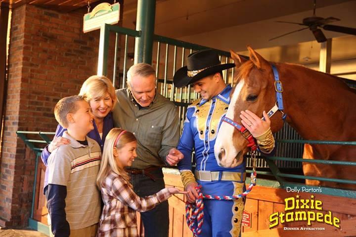 Dixie-Stampede-Horses