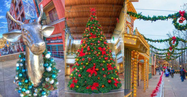 Christmas tree sweepstakes