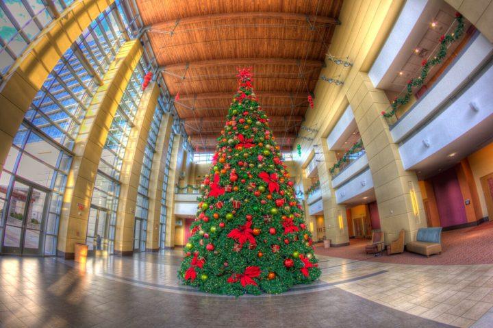 americas christmas tree city tour guide 2018 - American Sales Christmas Trees